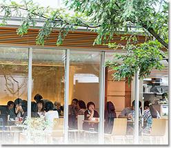 お寺のカフェ なゆた