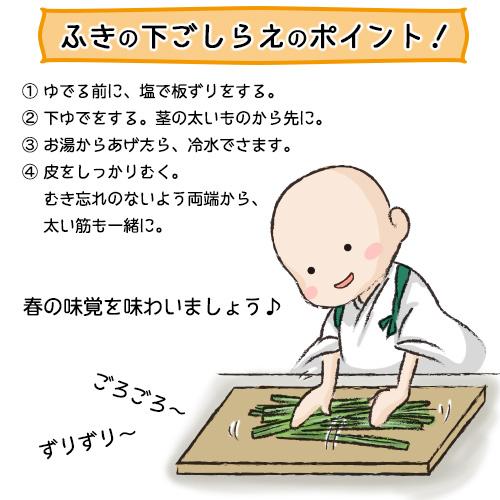 蕗と人参の白掛けイラスト